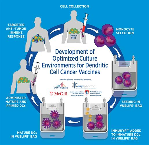 Interdisciplinary partnership between Saint-Gobain, Kanyr Pharma, and McGill in the development of optimized culture environments for dendritic cell cancer vaccines.