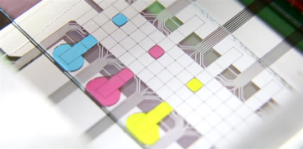 A microfluidic chip with droplets of liquid dyed in different colors for easier visualization.