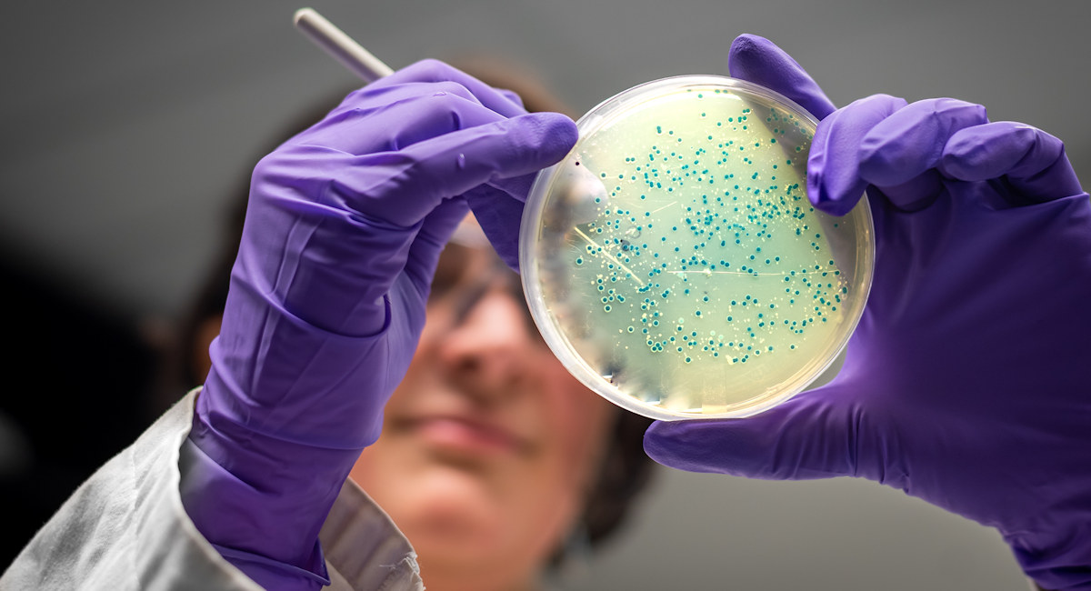 Scientists achieve milestone in animal-free production of biologics - The Science Board